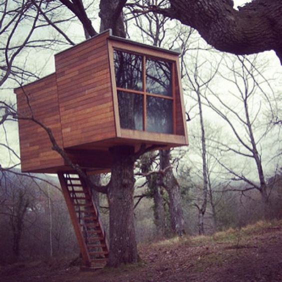 carpentry tree house